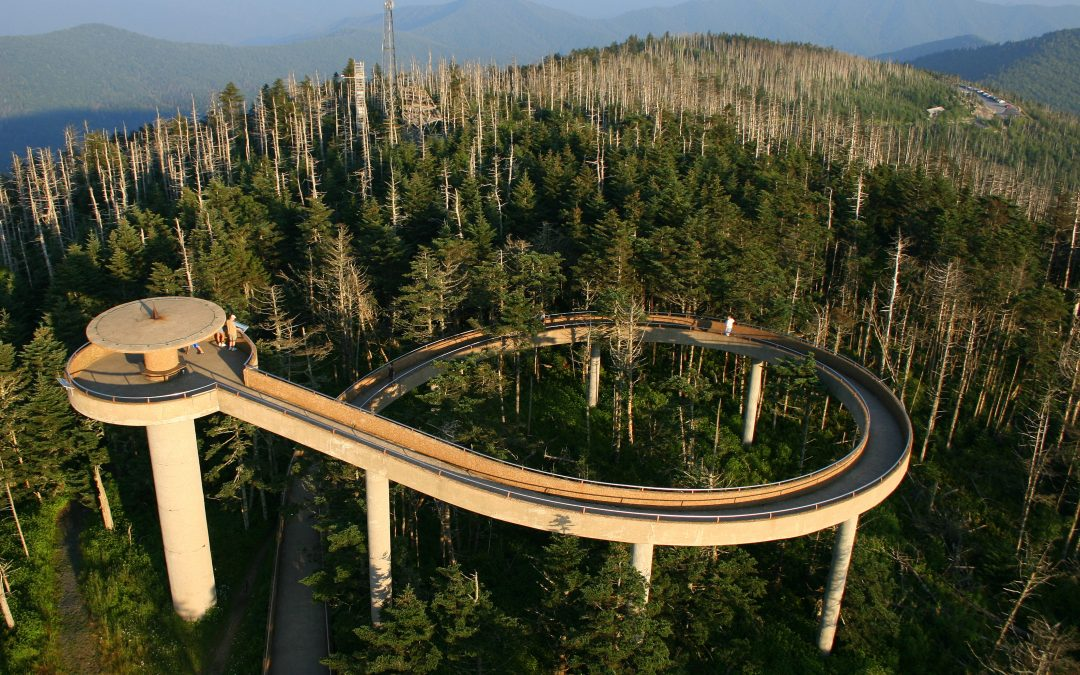 Clingman's Dome Overlook